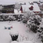 Srinagar Records Coldest Night Of Season, Drass Shivers At Minus 30.2 Degrees Celsius