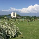 'No Internet, No Activity Against Interests Of Kashmir Univ