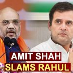 Amit Shah Slams Rahul Gandhi's People Are Dying In J&K Remark