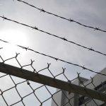 J&K National Conference Leader's Son Arrested Over Alleged Bank Fraud