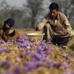 Transforming Agriculture In J&K Through Atmanirbhar Bharat Scheme