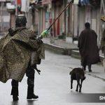 Prime Minister's Plan For J&K: High-Tech And Green 'naya' Srinagar, 'naya' Jammu