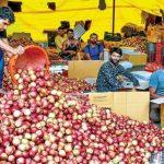 J And K Apple Prices Revised Under Market Intervention Scheme