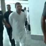 Rahul Gandhi, Opposition Leaders Arrives At Srinagar
