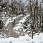 Cold Wave In Ladakh, Jammu And Kashmir Intensifies After Snowfall