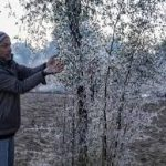 J&K Grapples With Severe Cold As Sub-Zero Temperatures Dip Further